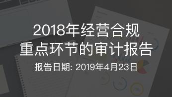 2018年经营合规重点环节的审计报告