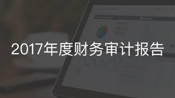 2017年度财务审计报告